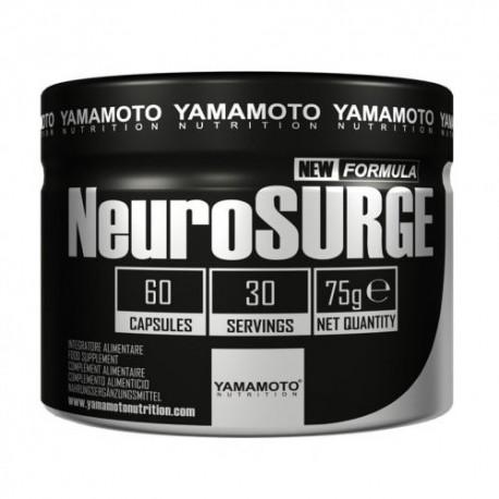 NeuroSURGE - Yamamoto